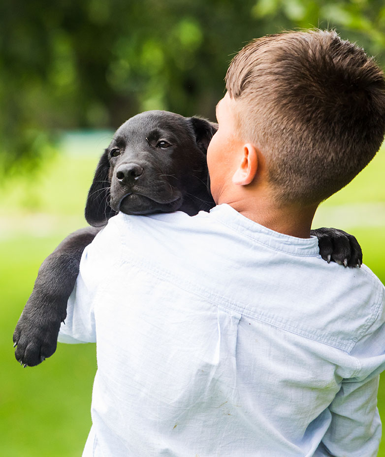 The boy with his favorite four-legged friend