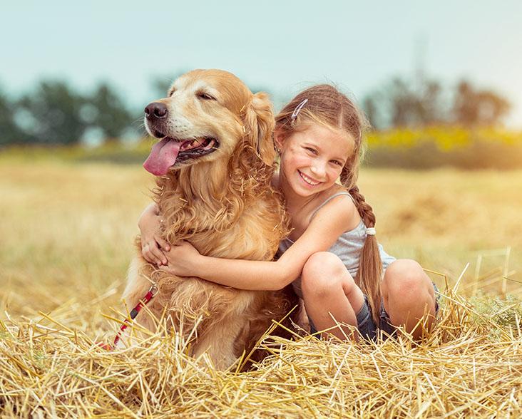 happy little girl with her dog golden retriever in rural areas in summer